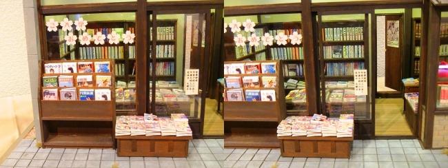 kinoe-ne ドールハウス 稲荷堂書店④(平行法)