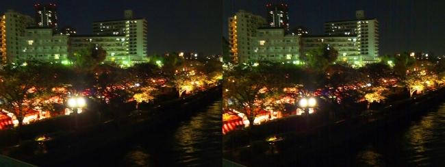造幣局 桜の通り抜け 夜桜⑳(平行法)