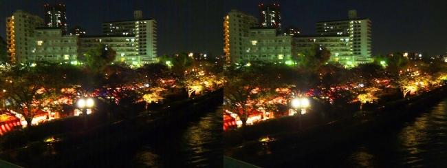 造幣局 桜の通り抜け 夜桜⑳(交差法)