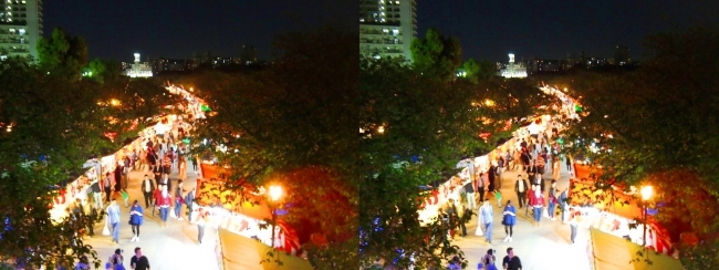 造幣局 桜の通り抜け 夜桜⑲(平行法)