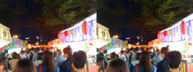 造幣局 桜の通り抜け 夜桜⑱(平行法)