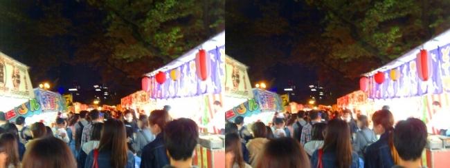 造幣局 桜の通り抜け 夜桜⑱(交差法)