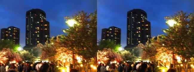 造幣局 桜の通り抜け 夜桜⑰(平行法)