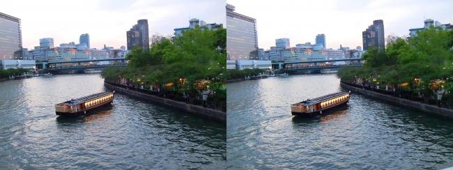 造幣局 桜の通り抜け 夜桜②(平行法)