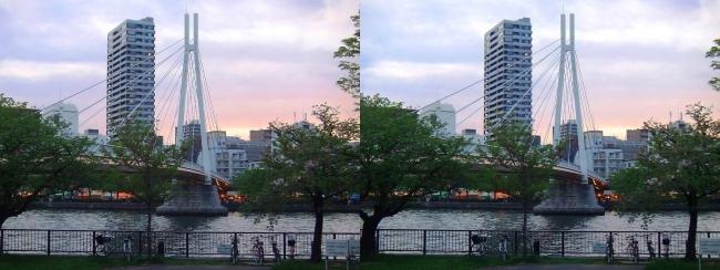 造幣局 桜の通り抜け 夜桜①(平行法)