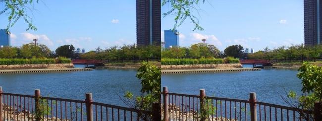 毛馬桜ノ宮公園(平行法)