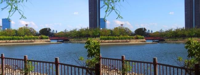 毛馬桜ノ宮公園(交差法)