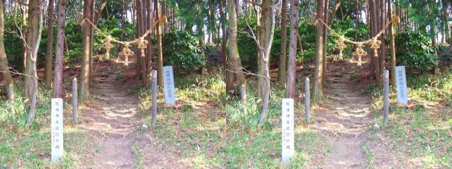 枚岡公園 枚岡神社神津嶽本宮(平行法)
