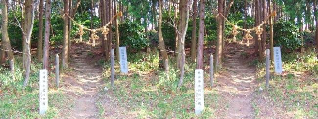 枚岡公園 枚岡神社神津嶽本宮(交差法)