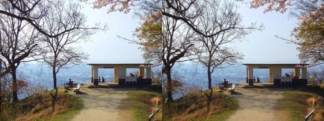 枚岡公園 枚岡山展望台⑥(交差法)