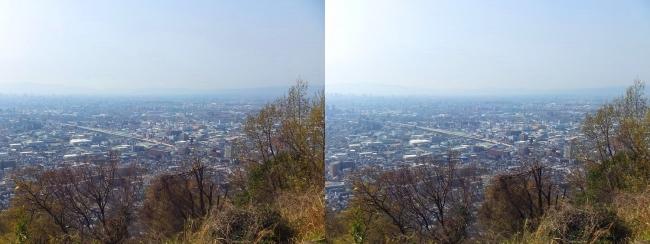 枚岡公園 枚岡山展望台⑤(平行法)