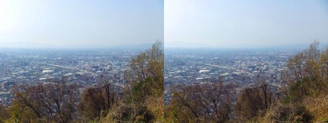枚岡公園 枚岡山展望台⑤(交差法)