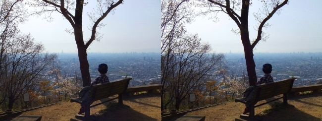 枚岡公園 枚岡山展望台④(平行法)
