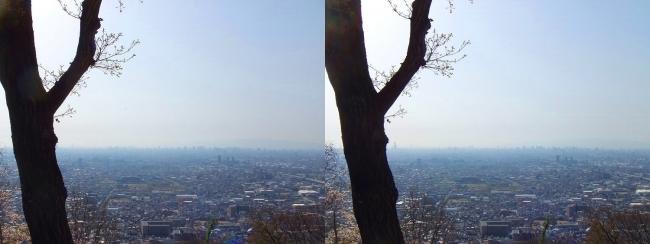 枚岡公園 枚岡山展望台③(平行法)