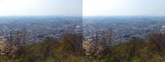 枚岡公園 枚岡山展望台②(平行法)