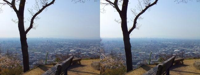 枚岡公園 枚岡山展望台①(平行法)
