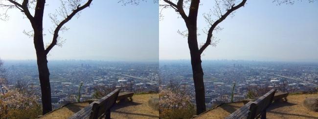 枚岡公園 枚岡山展望台①(交差法)
