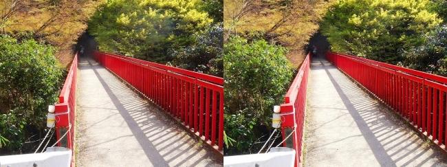 枚岡公園 豊浦橋(平行法)