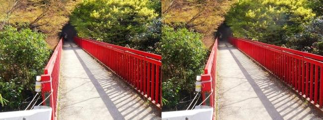 枚岡公園 豊浦橋(交差法)