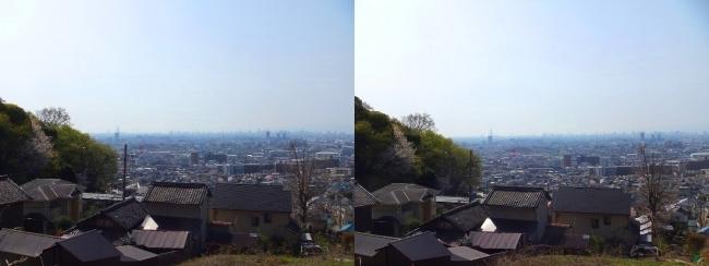 枚岡公園 額田②(平行法)
