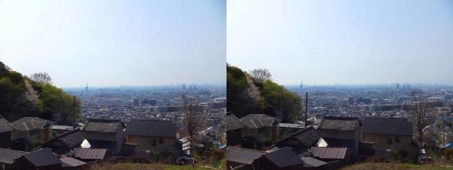 枚岡公園 額田②(交差法)