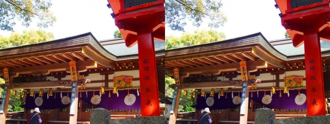 枚岡神社 拝殿③(平行法)