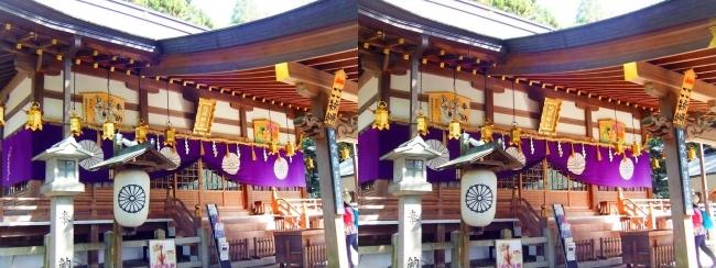 枚岡神社 拝殿②(交差法)