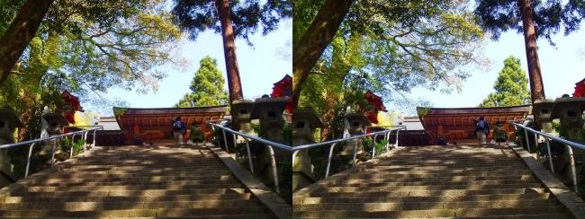 枚岡神社 拝殿への参道石段②(平行法)