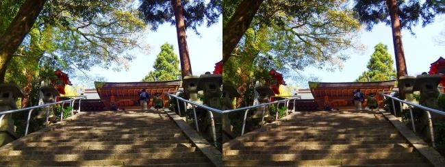 枚岡神社 拝殿への参道石段②(交差法)