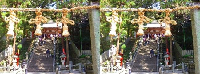 枚岡神社 拝殿への参道石段①(平行法)
