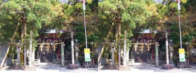枚岡神社 参道広場(交差法)