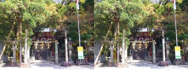 枚岡神社 参道広場(平行法)
