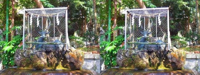 枚岡神社 神鹿の手水所①(平行法)