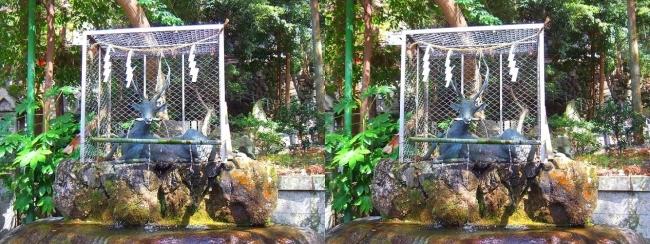 枚岡神社 神鹿の手水所①(交差法)