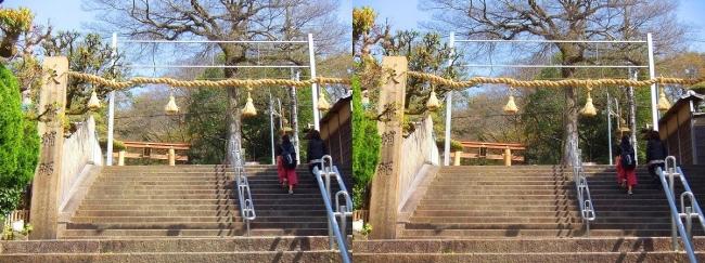 枚岡神社 駅前階段注連柱(交差法)
