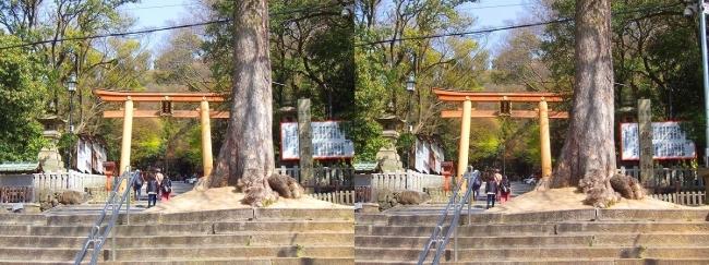 枚岡神社 二の鳥居①(交差法)