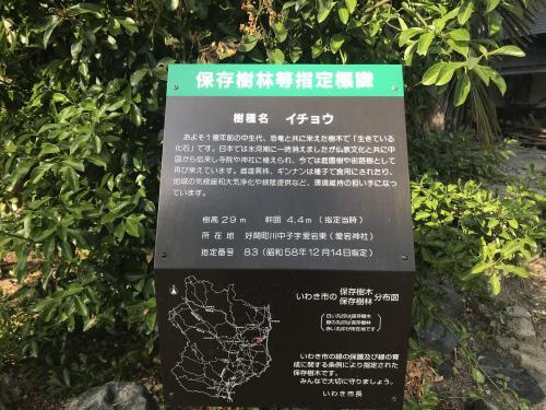 【好間町の愛宕神社】・5