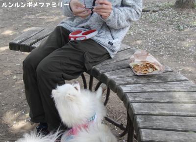 ケバブを食べよう