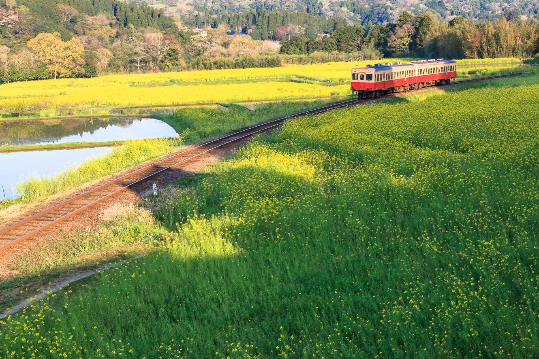090412いすみ鉄道-6077