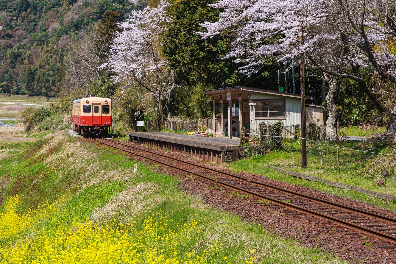 090407小湊鉄道-0154