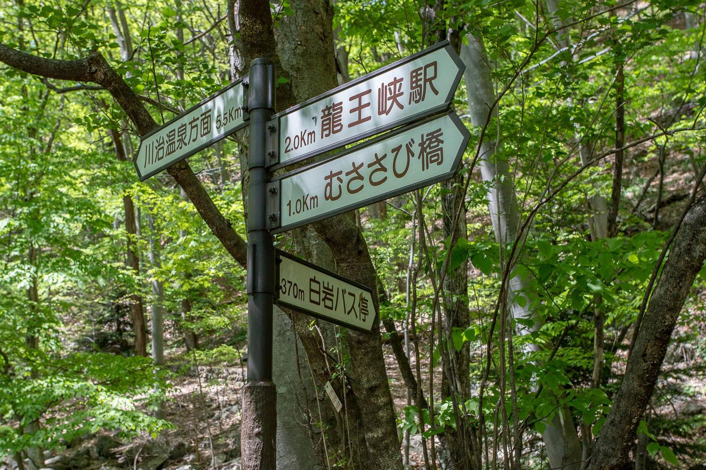 180426竜王峡-7499