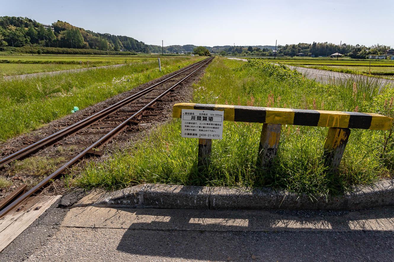 180505小湊鐵道-7631
