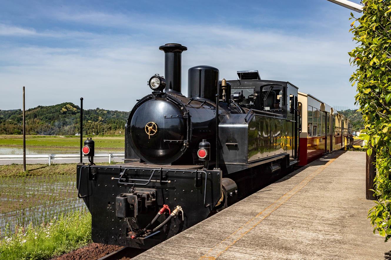 180505小湊鐵道-7655