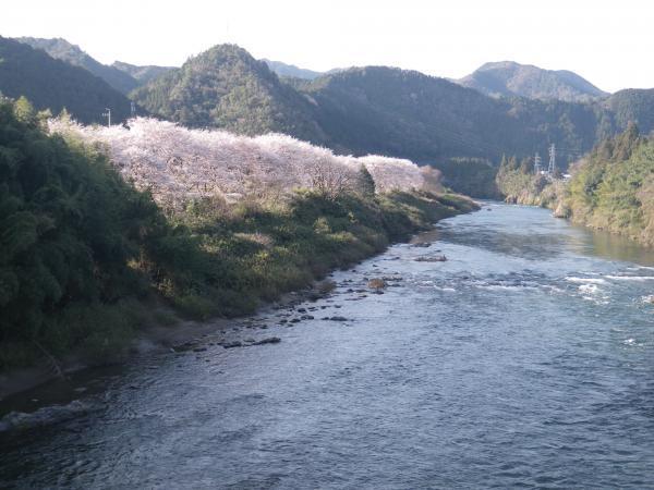 3月30日下田橋上