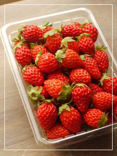 strawberry2018-01.jpg