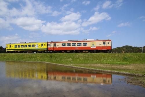 田んぼの水に映ったムーミン電車