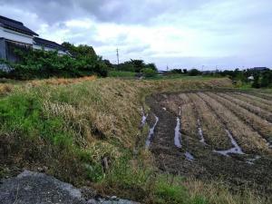 水回りのお掃除 草刈
