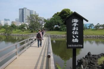 はIMG_0056 - コピー