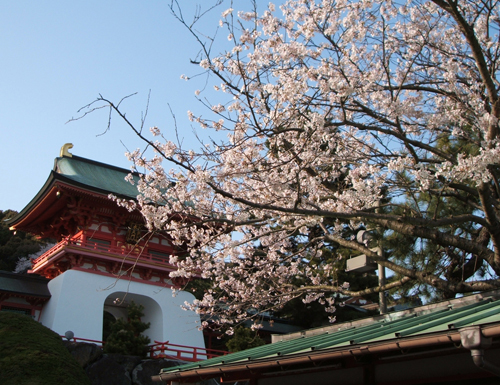 new赤間神宮ブログ5