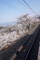 桜勝沼ぶどう郷駅